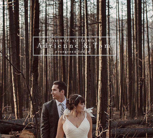 A + T [ wedding] Evergreen Lodge, Yosemite