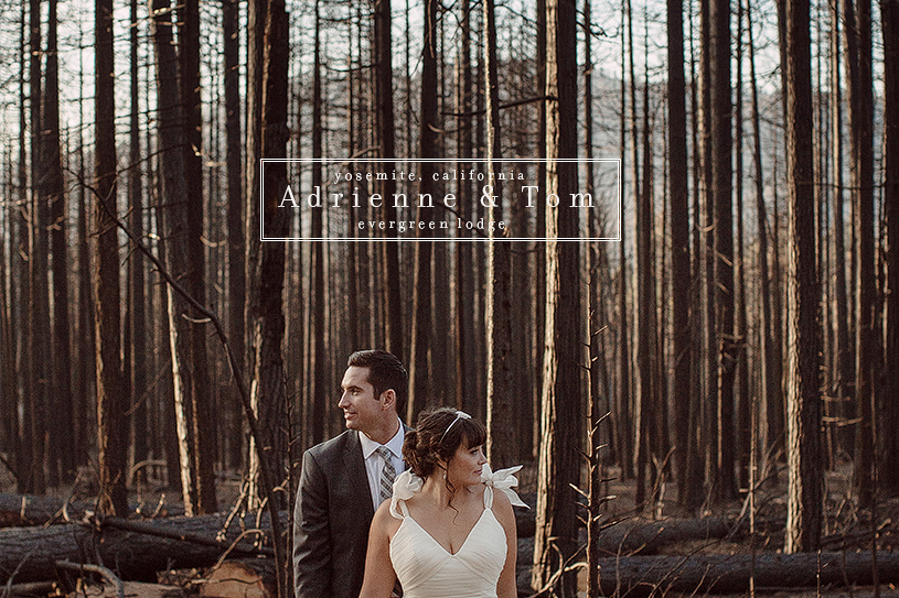 Evergreen Lodge wedding in Yosemite with Kirstie Kelly wedding dress
