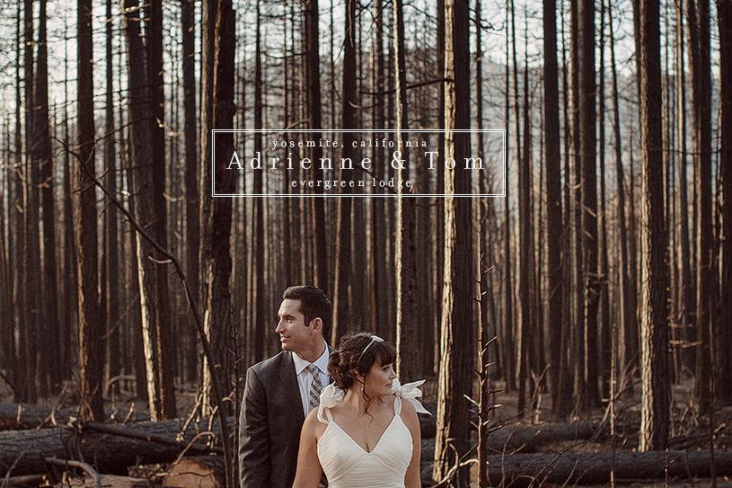 Evergreen Lodge wedding in Yosemite with Kirstie Kelly wedding dress