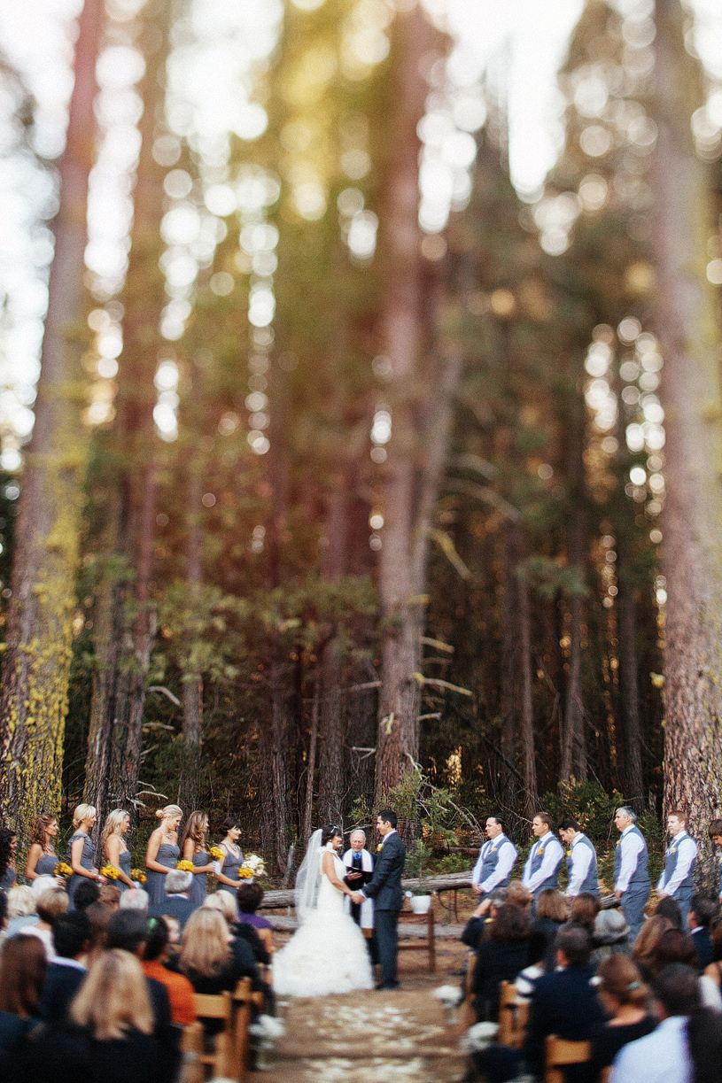 Evergreen Lodge Ceremony site Yosemite