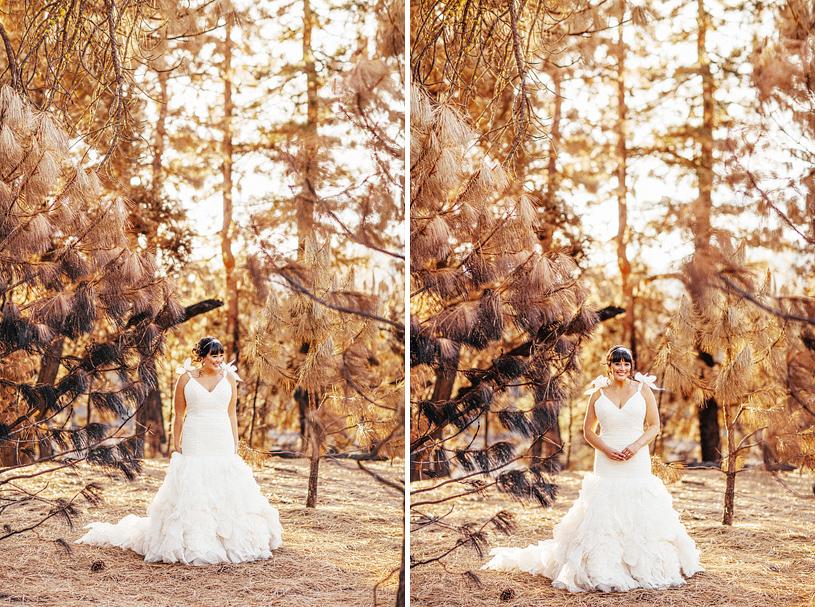 yosemite-evergreen-lodge-wedding055