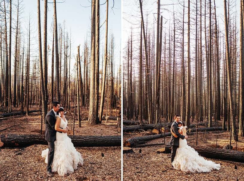 yosemite-evergreen-lodge-wedding061