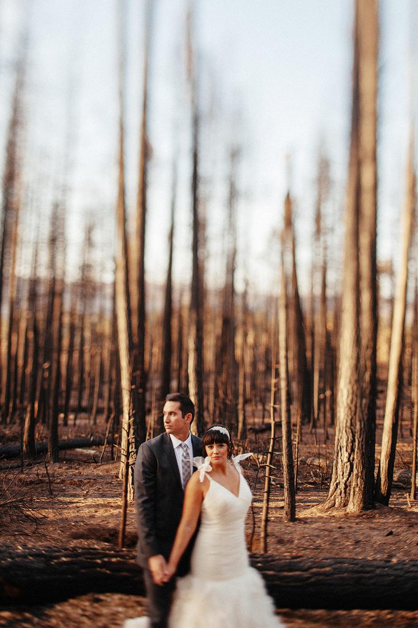 yosemite-evergreen-lodge-wedding062