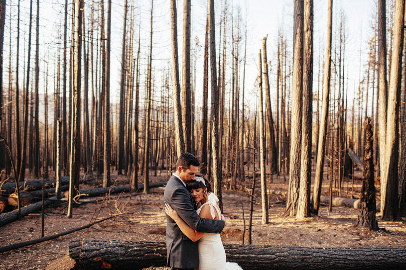 Bride and groom portrait in the burnt down ruins of Yosemite