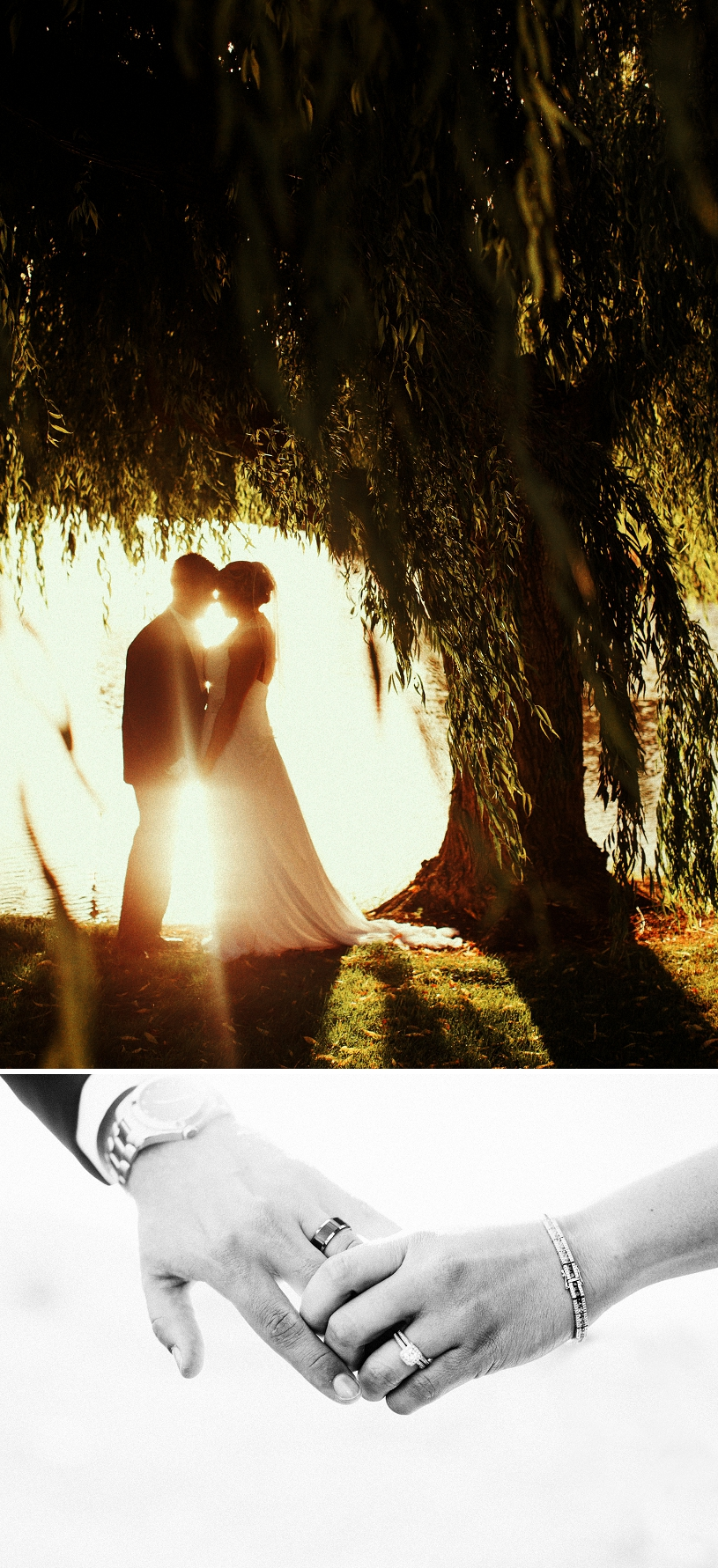 Fine Art Wedding portrait by a Willow Tree in San Ramon