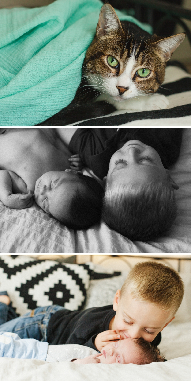 fineart-newborn-photography6