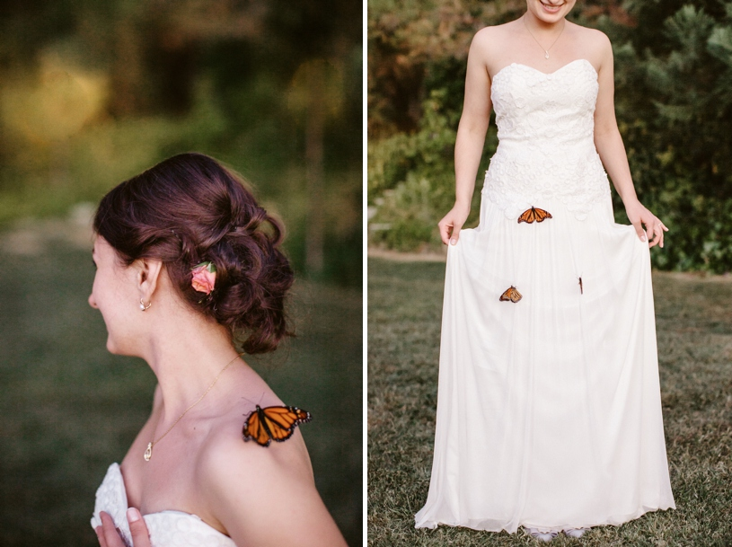 butterfly release at a wedding