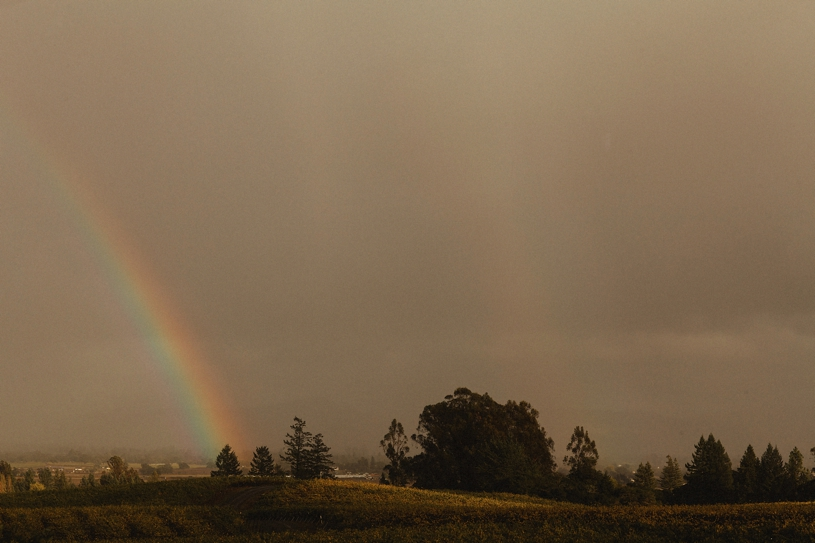 rainbow in the vineyard at the vine hill house by heather elizabeth photography