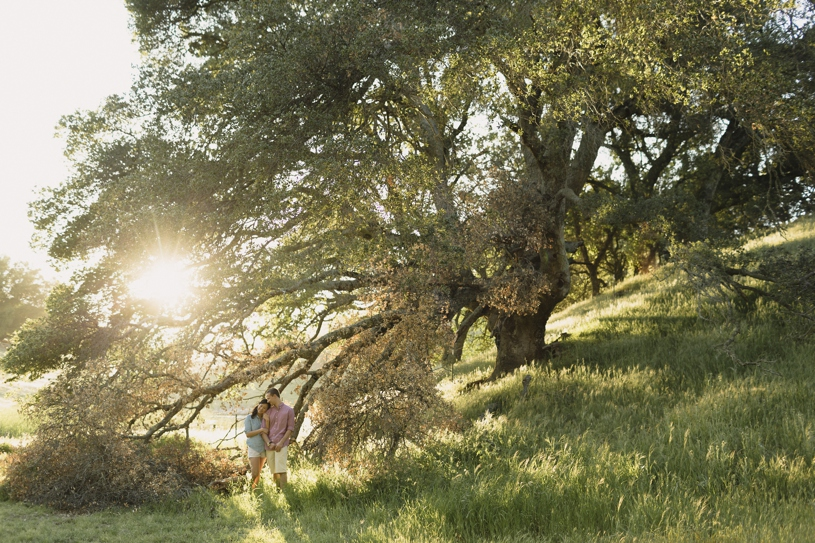 Fine art pastel engagement in nature at livermore morgan territory park by heather elizabeth photography