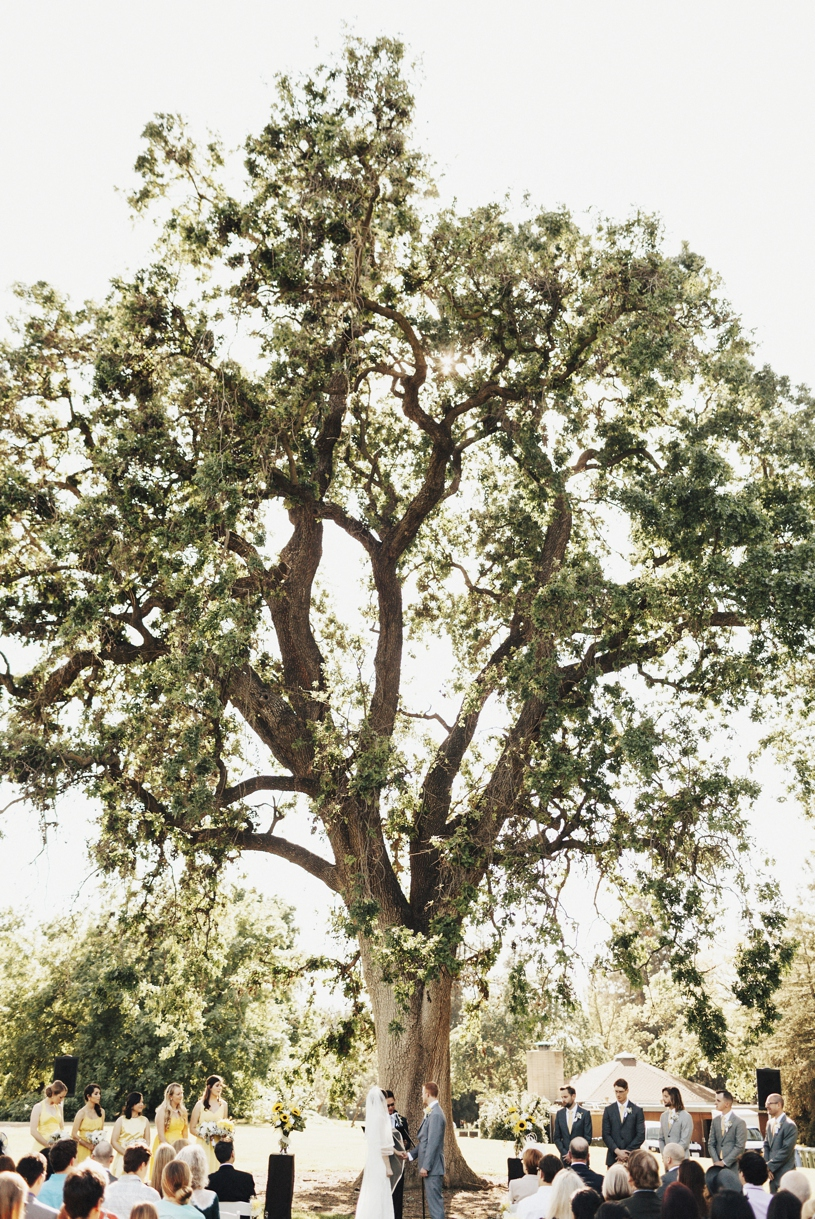 heather-elizabeth-29-uc-davis-putah-creek-wedding3