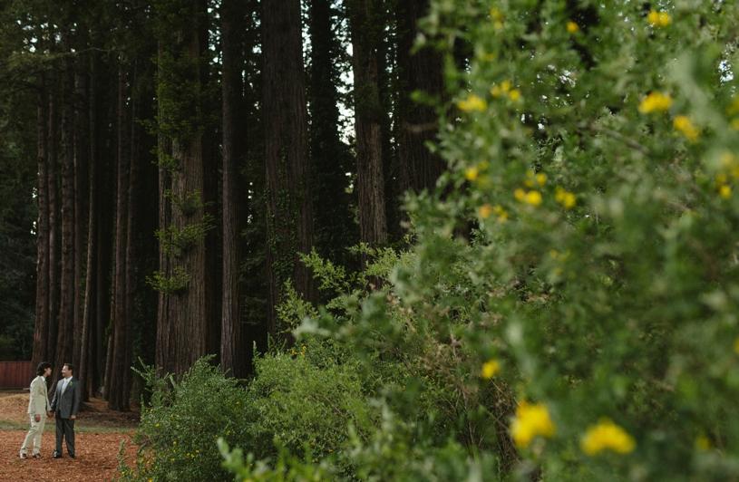 heather-elizabeth-eco-redwood-wedding29