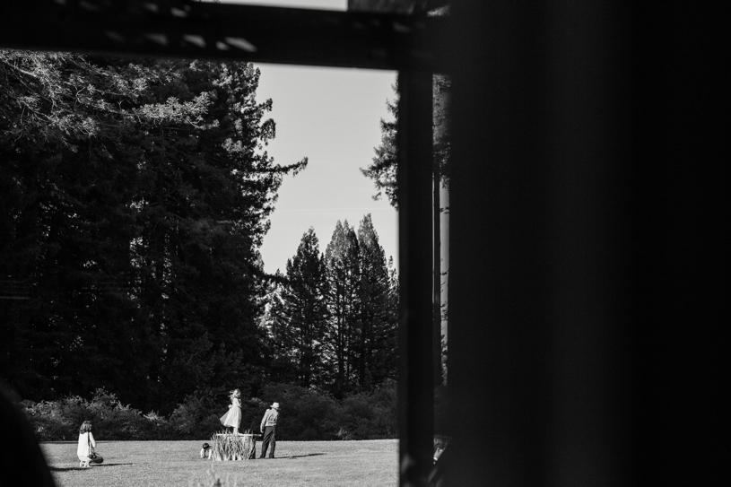 heather-elizabeth-eco-redwood-wedding44