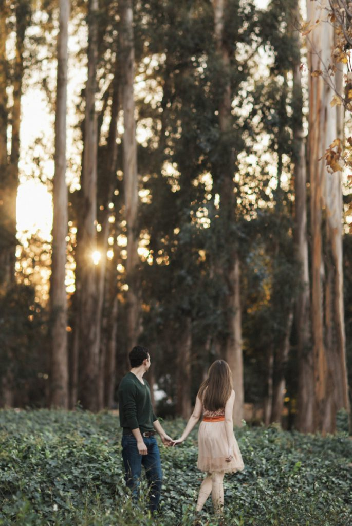 Sunset in the forest engagement session in Berkley by Heather Elizabeth Photography