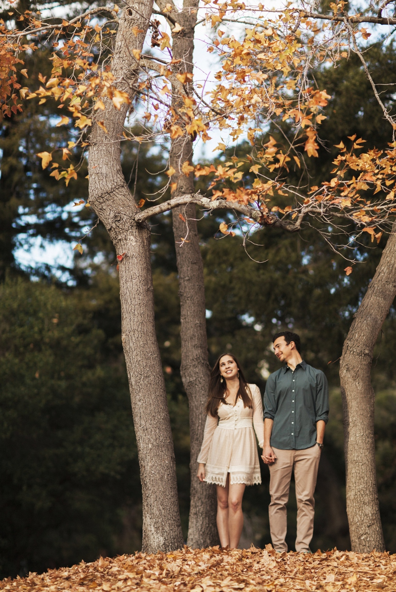 Fall engagement session in Berkley by Heather Elizabeth Photography