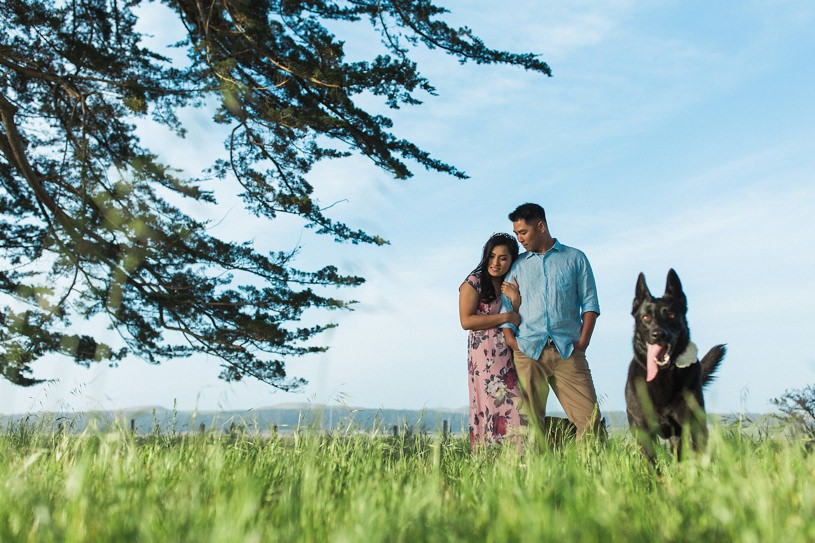 Dog friendly engagement photography session in Point Reyes