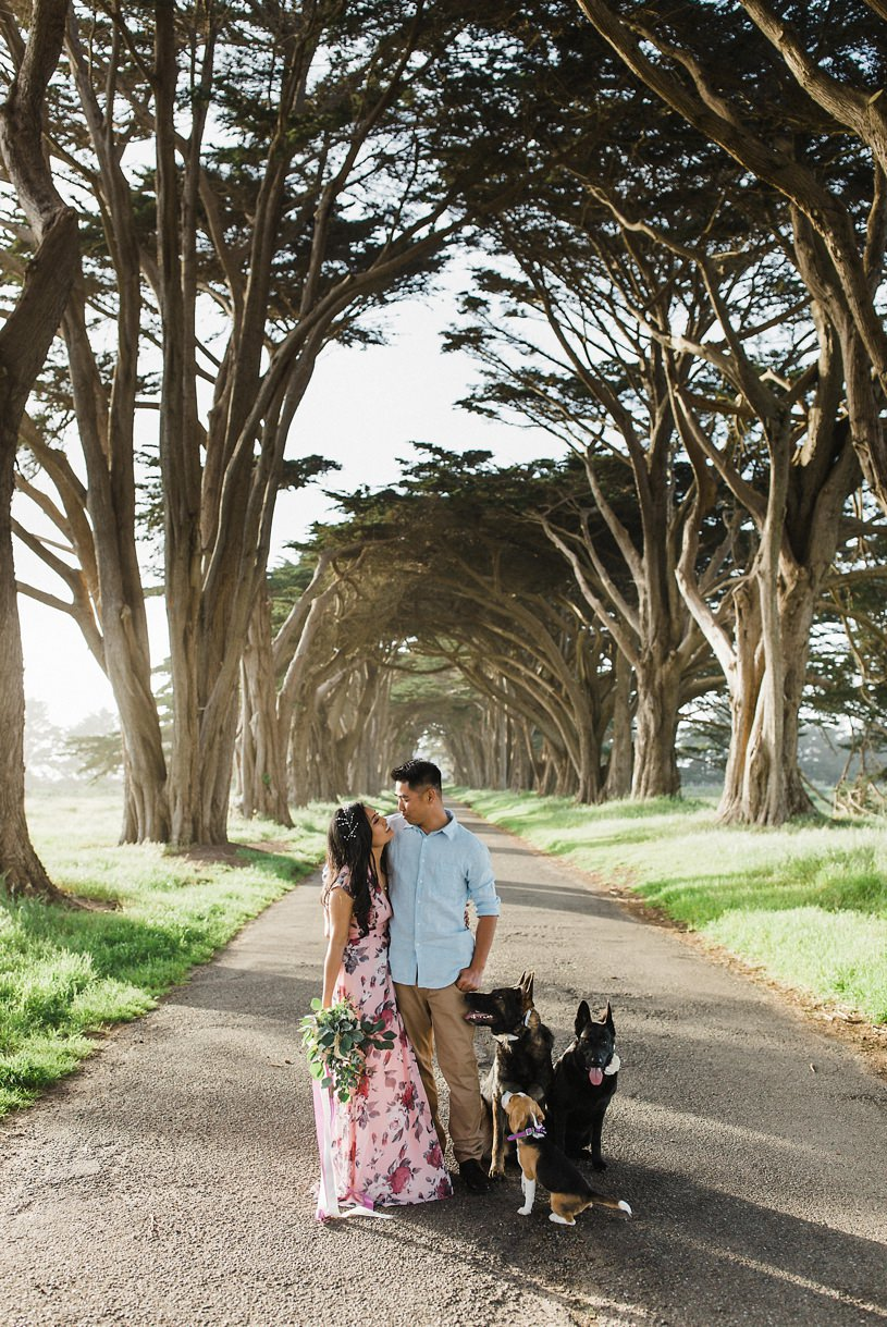 romantic whimsical dog engagement photo session in Point Reyes by top wedding photographer Heather Elizabeth