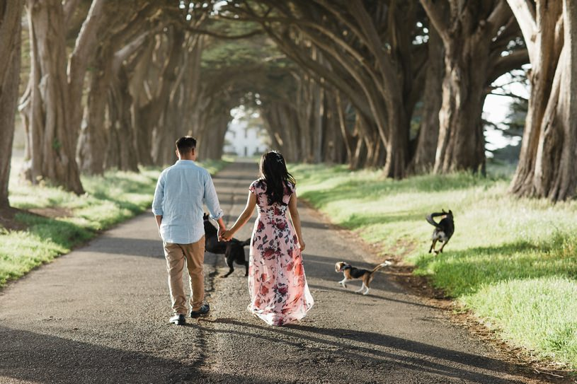 couple walking together with their dogs for their engagement session in point reyes