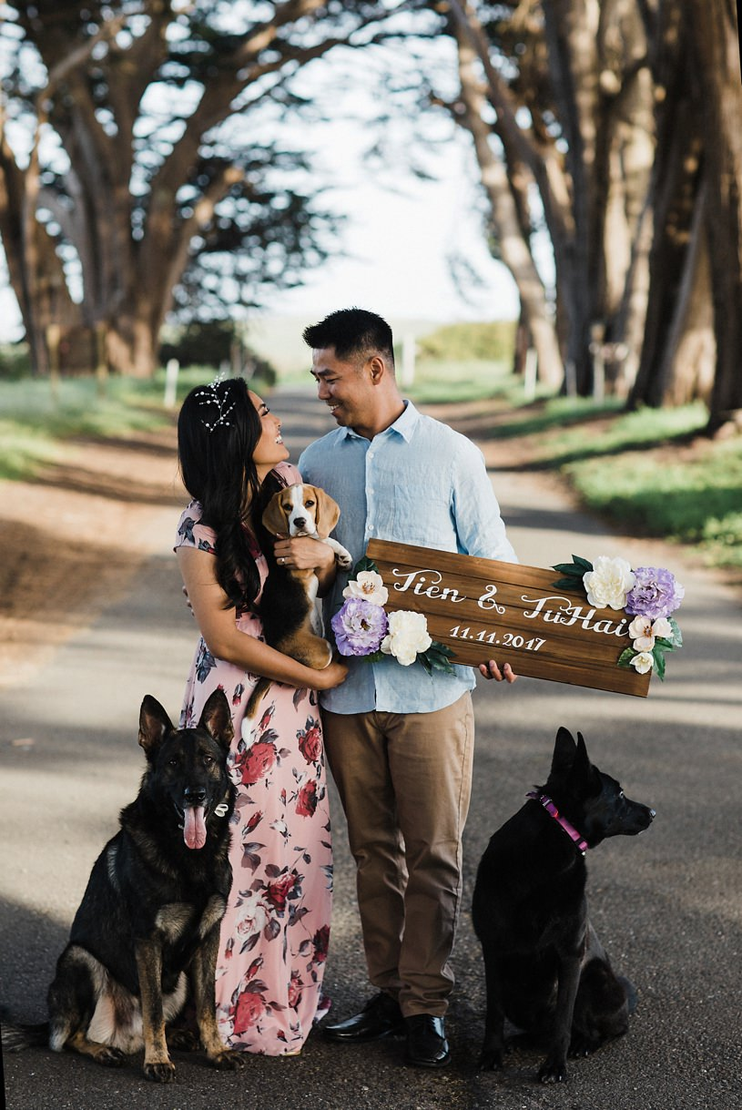 dog engagement session at the tree tunnel in point reyes