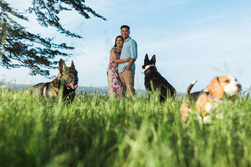puppy engagement photography in Point Reyes