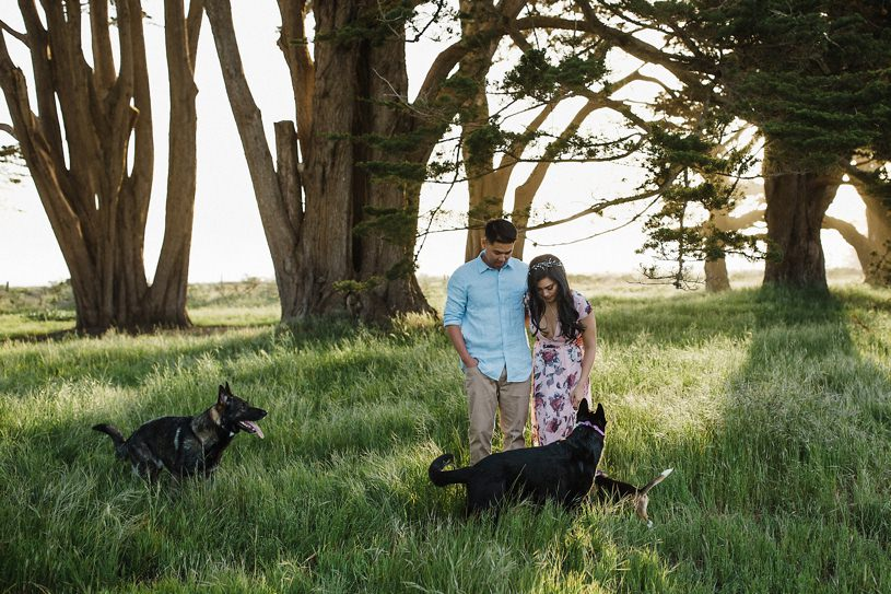 puppy and dog beagle engagement photography session by Heather Elizabeth Photography