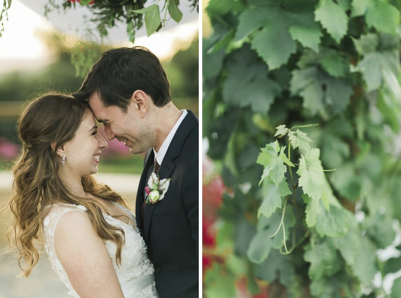 winery weddings pics